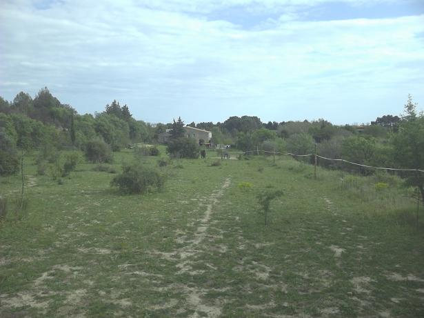 JdB de 4 hectares de pâtures dans le SUD : Janvier à la diète... + expérimentation 226avr10
