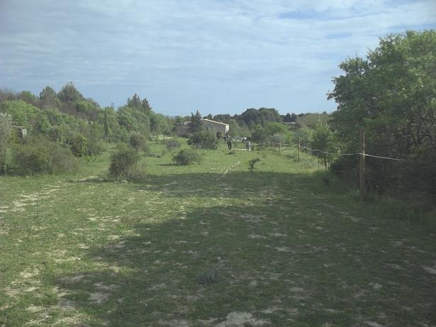 JdB de 4 hectares de pâtures dans le SUD : Timide reprise après 8 mois de sécheresse 234avr10