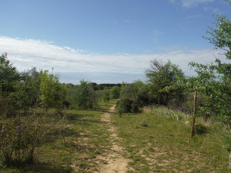 JdB de 4 hectares de pâtures dans le SUD : Janvier à la diète... + expérimentation Dscf3620