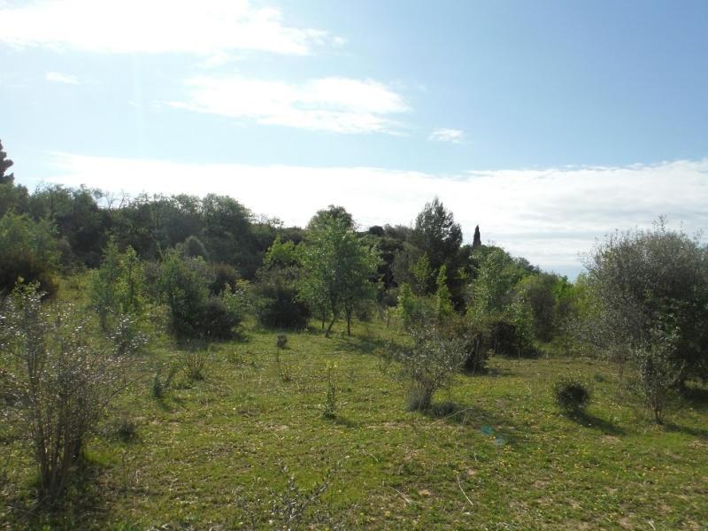 JdB de 4 hectares de pâtures dans le SUD : Timide reprise après 8 mois de sécheresse Dscf3621