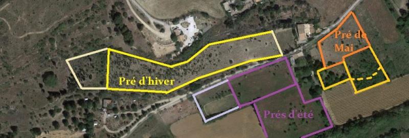 JdB de 4 hectares de pâtures dans le SUD : Timide reprise après 8 mois de sécheresse Planmi10