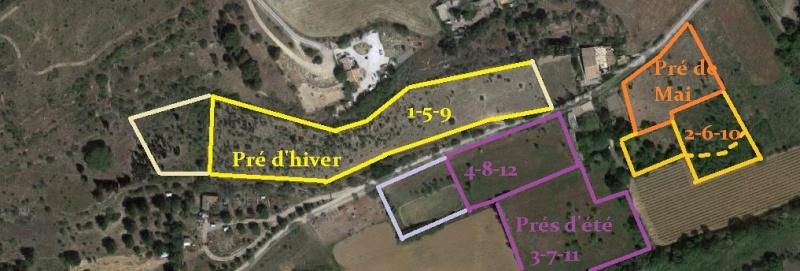 JdB de 4 hectares de pâtures dans le SUD : Janvier à la diète... + expérimentation Planmi11