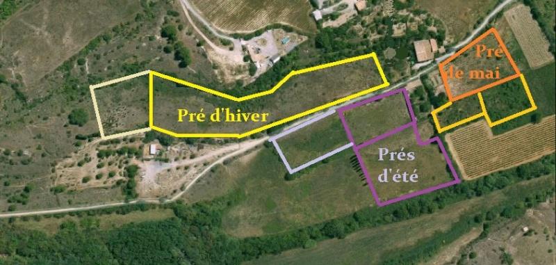 JdB de 4 hectares de pâtures dans le SUD : Janvier à la diète... + expérimentation Planpa10