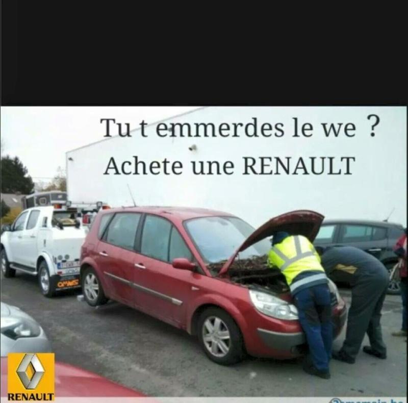 Transport Bouvier bernois - Page 2 11261210