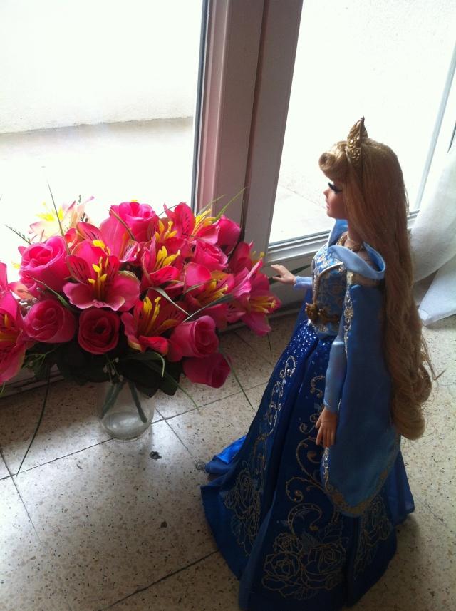 Ma collection des poupées des films de DISNEY - Page 6 Img_1515