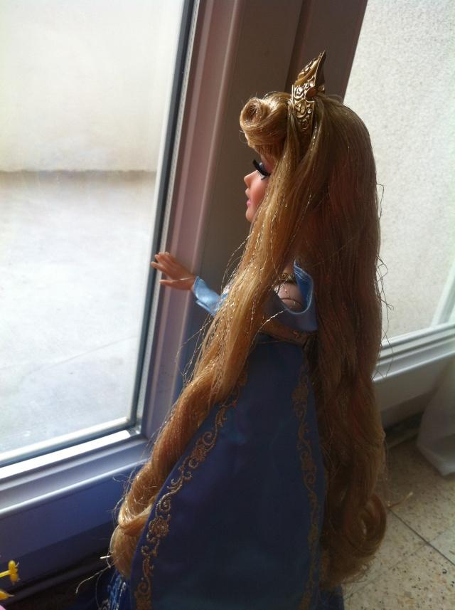 Ma collection des poupées des films de DISNEY - Page 6 Img_1614