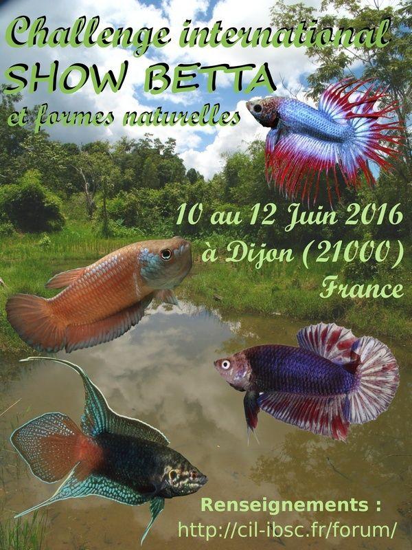 Challenge international 2016/ Dijon, 10/12 juin. Affich10