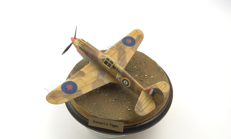 Curtiss P-40 Airfix et Trumpeter - 1/72 - special project 5810