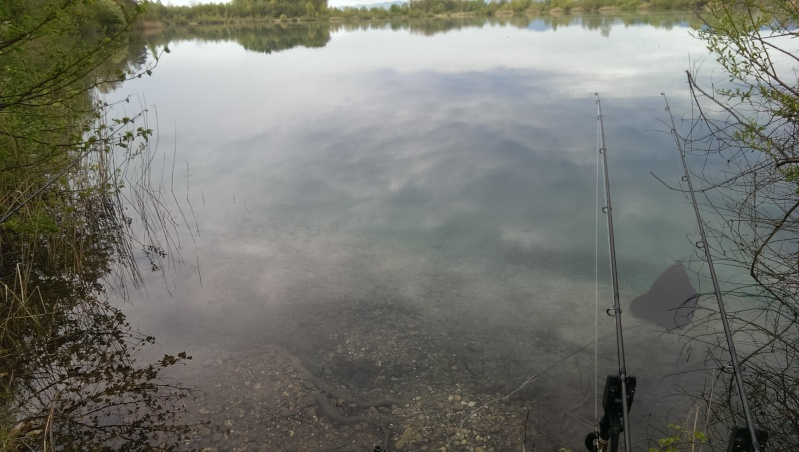 Live fishing (Vos sessions en direct !!!) Imag1310