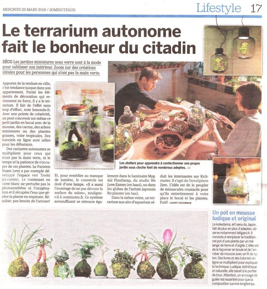 20minutes - Le terrarium autonome fait le bonheur du citadin 20min210