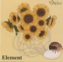 Discographie Moran Elemen10