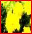 Photographie à thèmes - Page 2 Al310