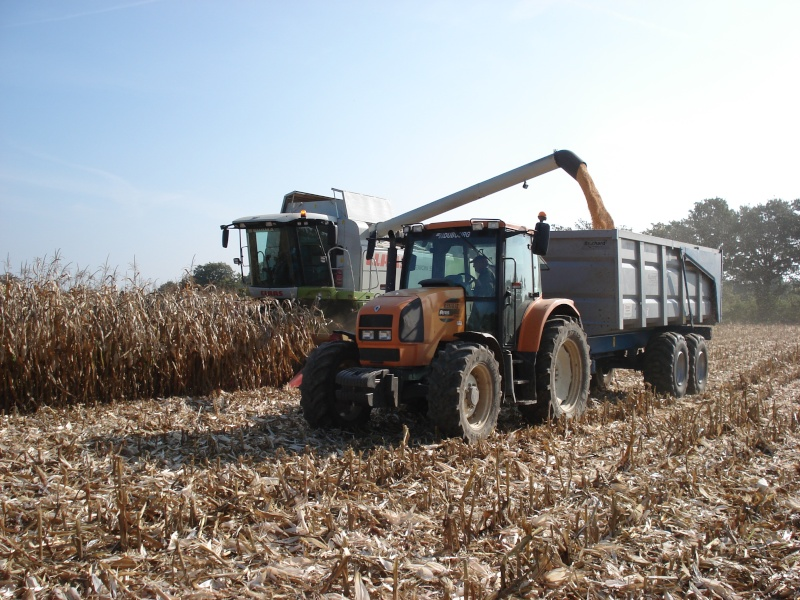 Moissons maïs 2009 Dsc05413