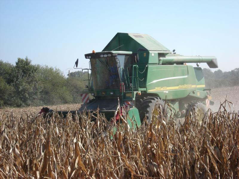 Moissons maïs 2009 Dsc05419