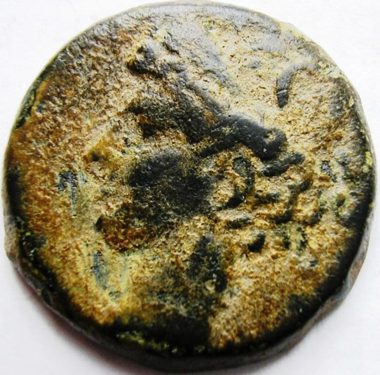 Cartago medio shekel. Cartag19