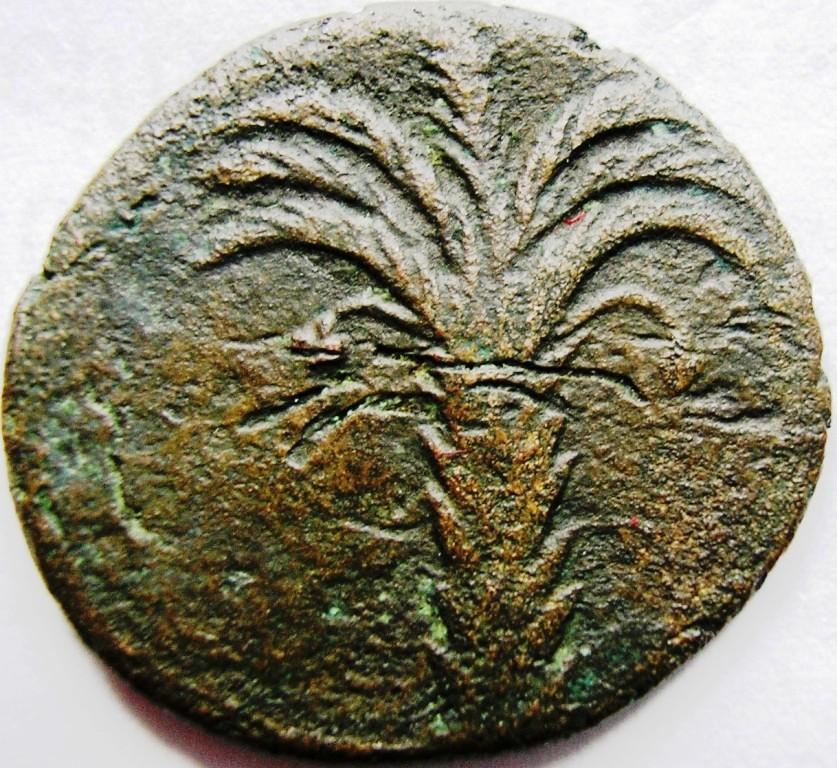 Cartago medio shekel. Cartag25