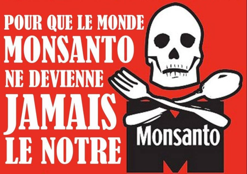 Monsanto : l'horreur ! - Page 3 13006510