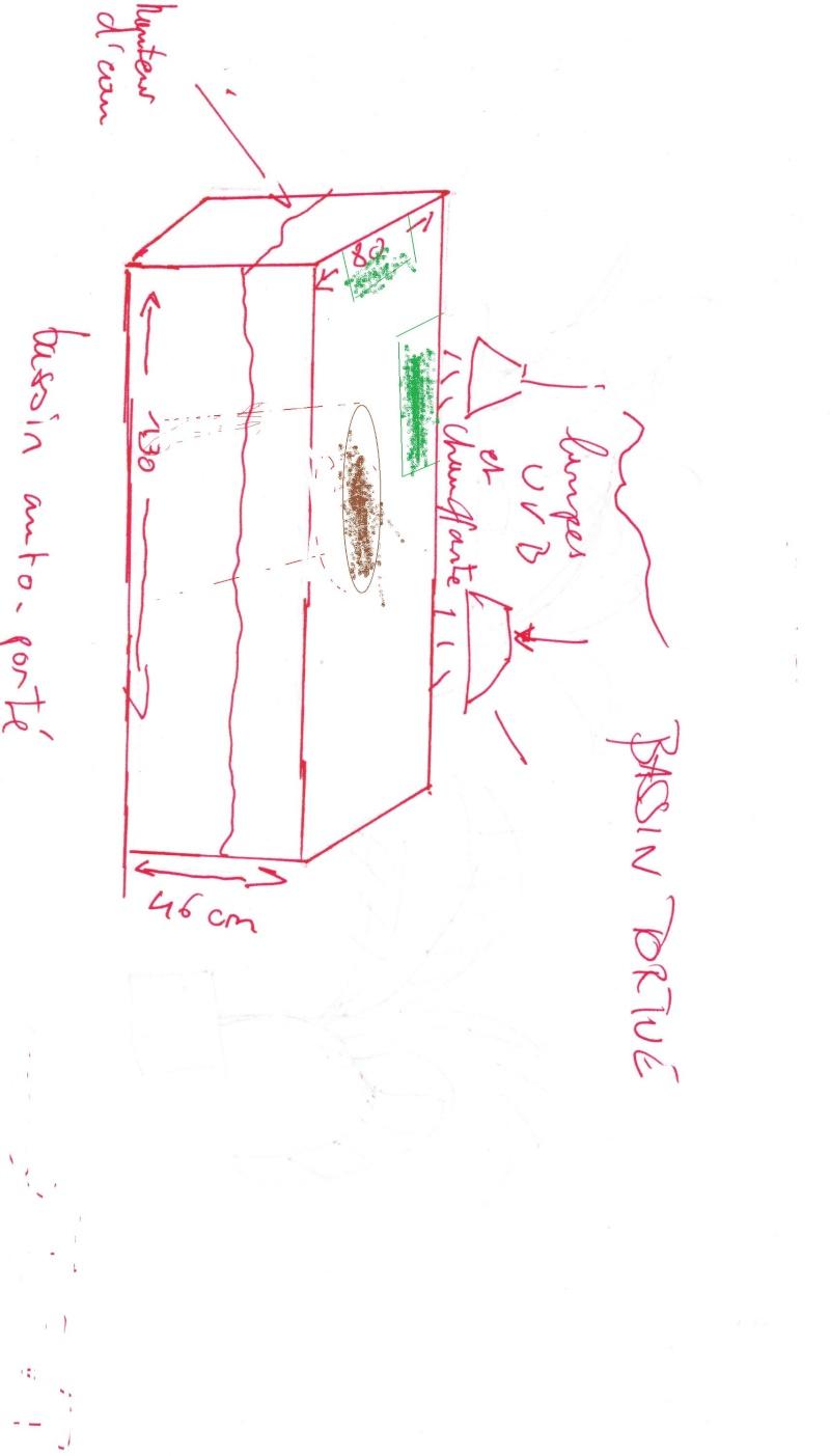 bassin d'intérieur pour tortues - Page 12 Bassin13