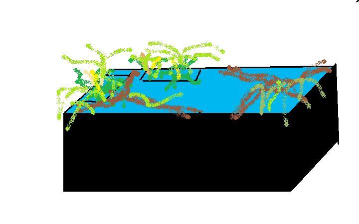bassin d'intérieur pour tortues - Page 14 Croqui28