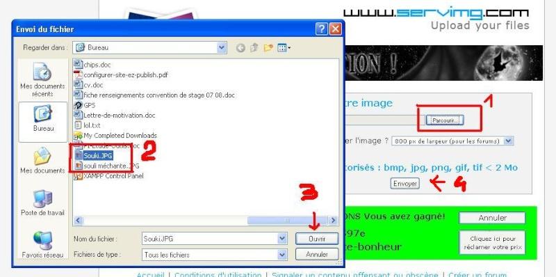 Poster une photo sur le forum : comment faire. 71010