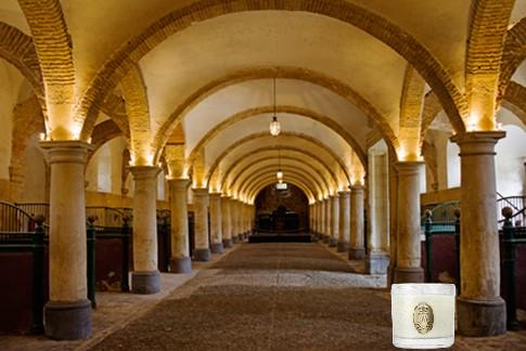 Enfin !   Réouverture de la Galerie des Carrosses à Versailles Bougie10