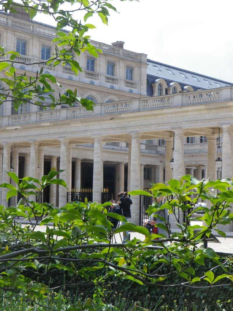 Le Palais Royal Palais22
