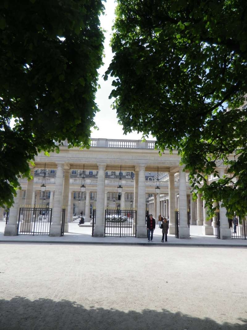 Le Palais Royal Palais24