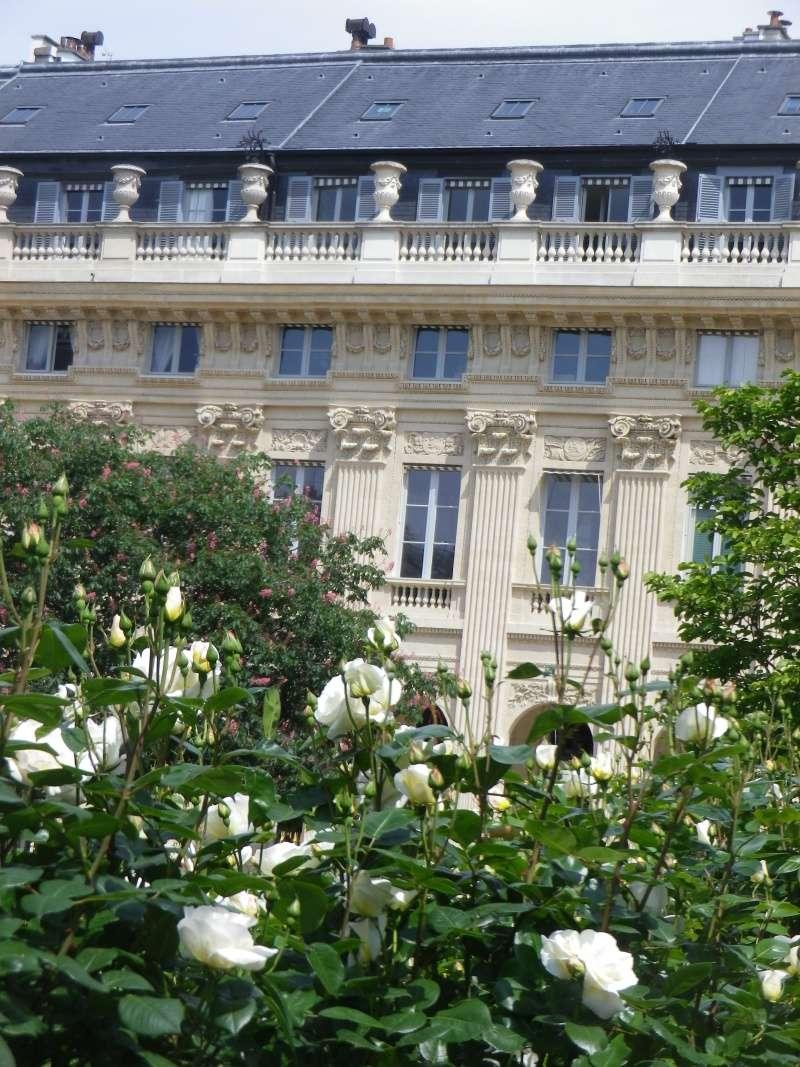 Le Palais Royal Palais25