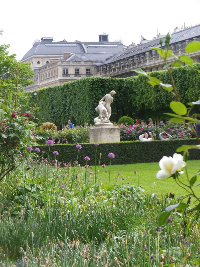 Le Palais Royal Palais26