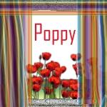 Poppy Poppya10