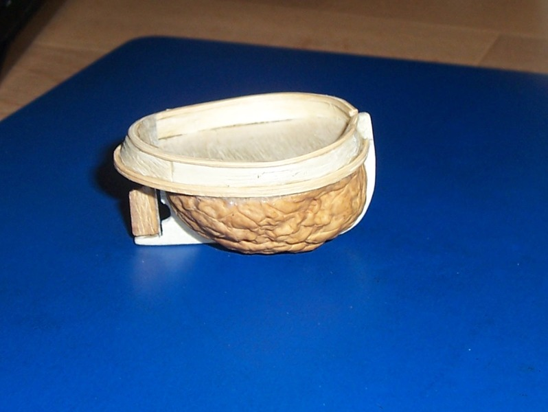 TOOT TOOT! remorqueur coquille de noix 0421
