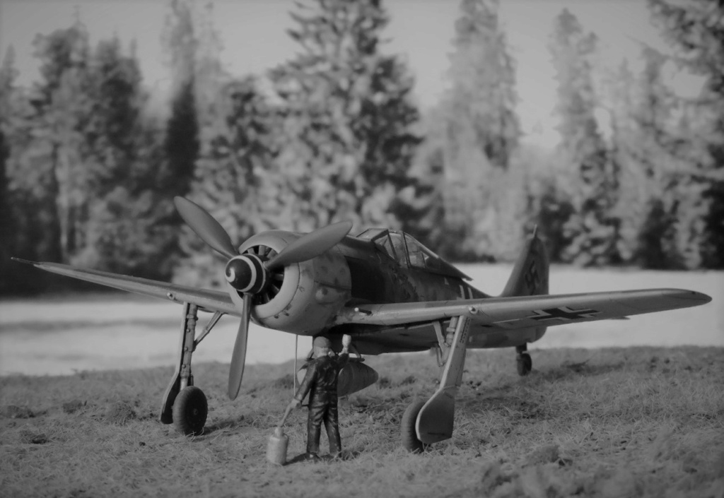 [Edouard] focke wulf 190 A-8 R2 terminé!! - Page 3 Focke131
