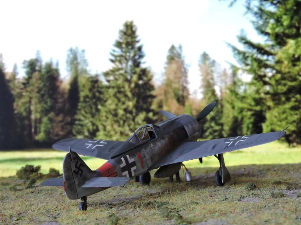 [Edouard] focke wulf 190 A-8 R2 terminé!! - Page 3 Focke135