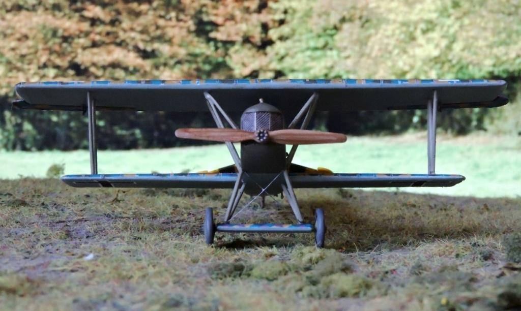 [revell] Fokker DVII - Page 2 Fokker84