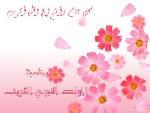 يارب مولد نبوي سعيد عليكووووو 0120510