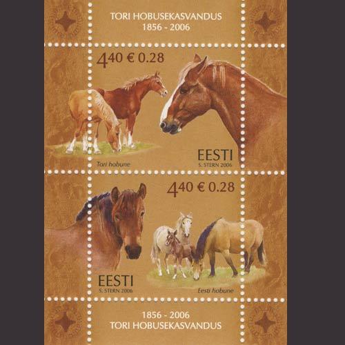 Pferde - Seite 3 Img_9210