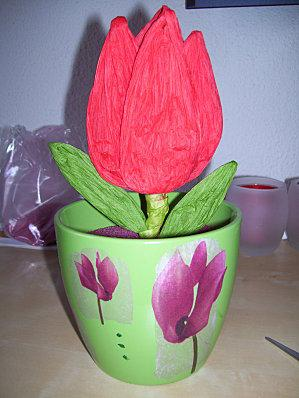Fleurs en papier crépon Ensemb10