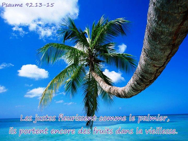 30 avril : Journée de l'honnêteté - La Journée de l'honnêteté serait une bonne occasion pour revoir la valeur de cette qualité selon la Parole de Dieu Les_ju10