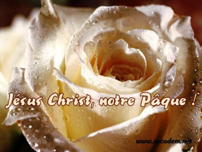 Pâque juive et Pâques chrétiennes Pyques11