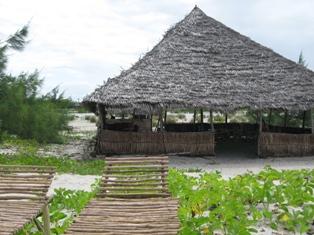 L'isola delle conchiglie Copia_28