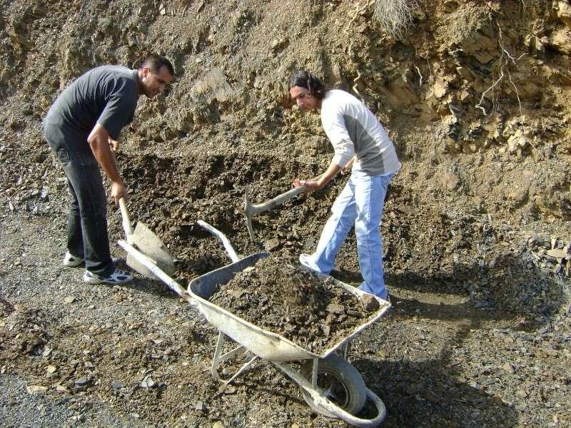 Tiwizi à taremant (chez Hafit). Dsc02314