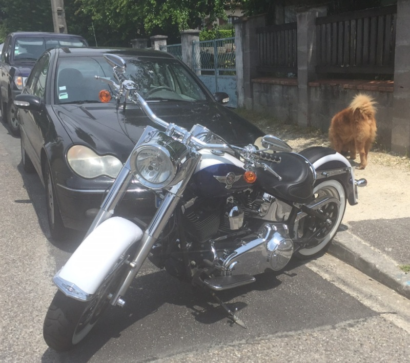 Bonjour Softail... - Page 2 Img_1010