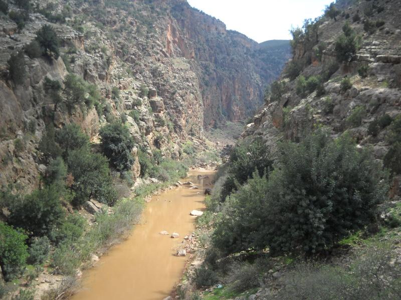 Retour Maroc avril 2016 Dscn4120