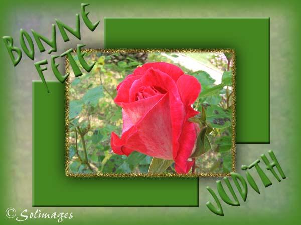 fête  à  souhaiter   - Page 37 Judith10
