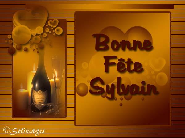 fête  à  souhaiter   - Page 37 Sylvai10