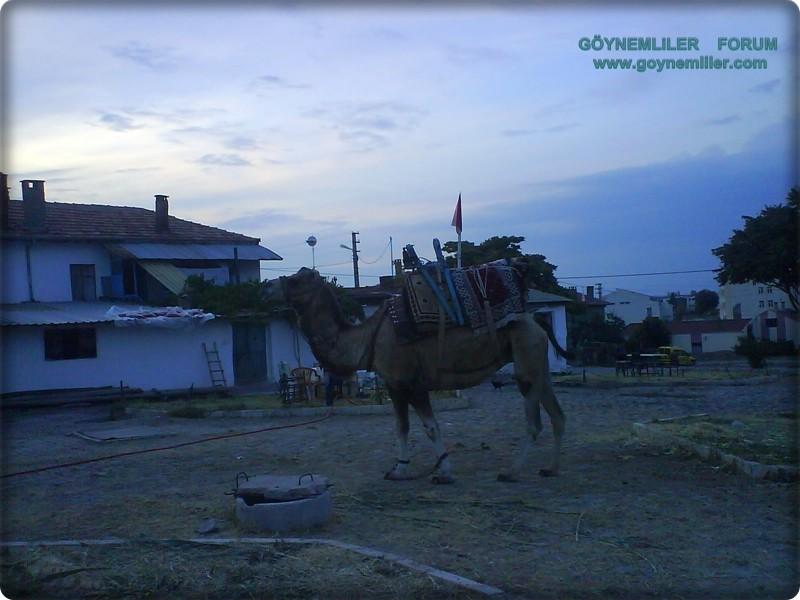 Ramazan etkinlikleri-Eşrefoğlu,Beyşehir Dsc00618