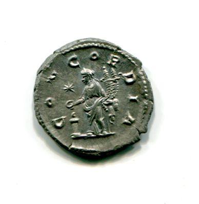 Les romaines de slynop - Page 3 Aquili11