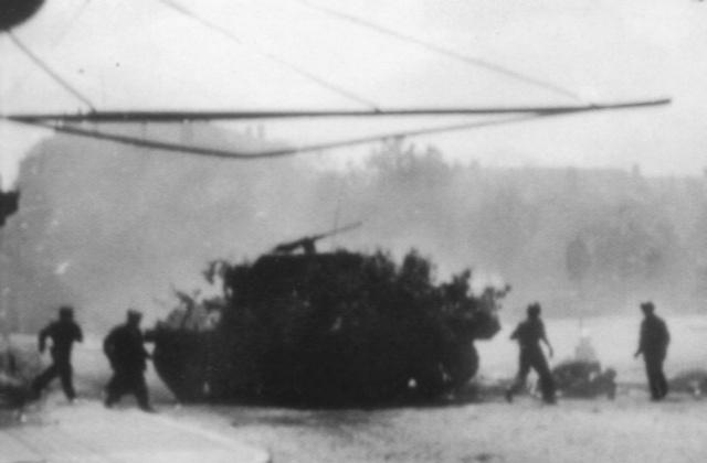 Identification char M10 M_10_f14