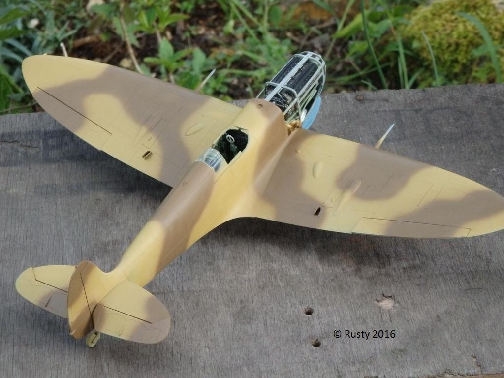 SPITFIRE Mk.Vb TROP [1/32 HOBBY BOSS] P4102615