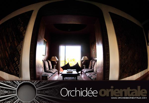 www.orchideeorientale.com